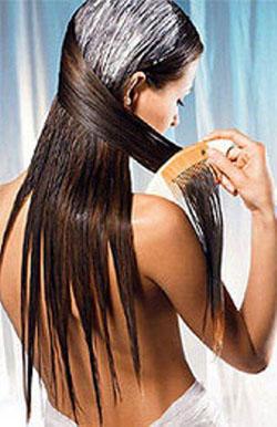 На мокрые волосы наносить репейное масло